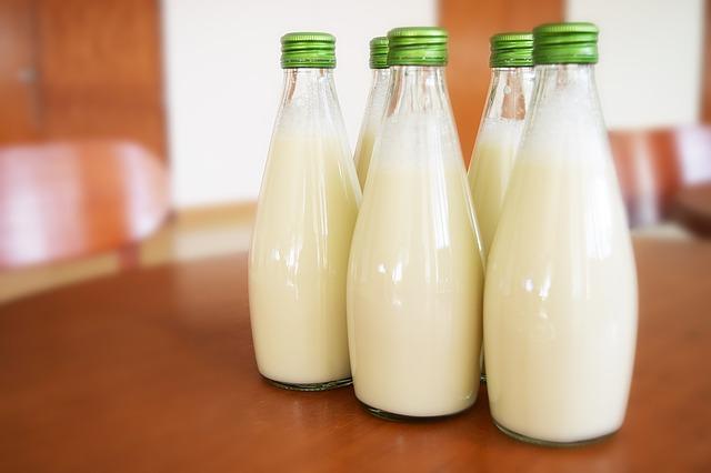 テーブルに並ぶ数本の牛乳